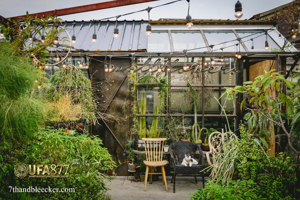 Wallflower Cafe